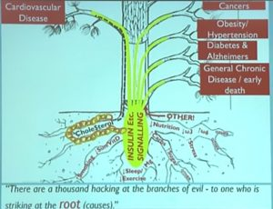 Roots-of-Disease